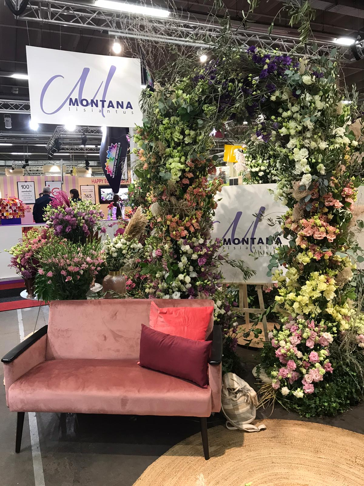 montana lisianthus trade fair 6